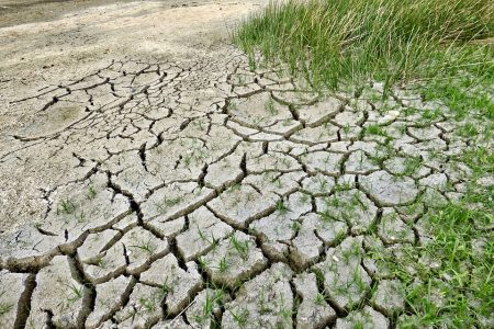 The Complex Relationship Between Climate Change and Conflict