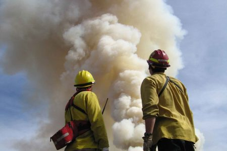 Understanding the Emergency Services from an Organizational Systems Perspective
