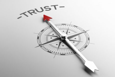 Political institutions, trust, and security
