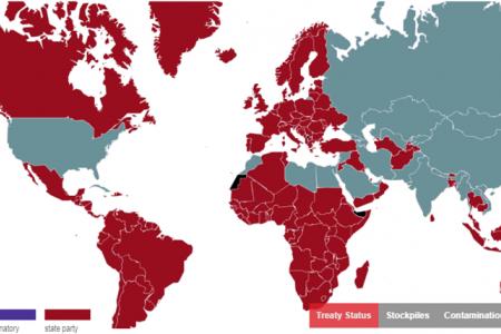 The Ottawa Treaty on Landmines: Time for Rejuvenation